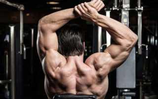 Как правильно качать плечи: упражнения на плечи в зале и дома