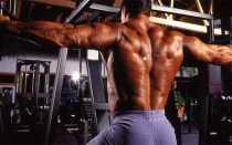 Упражнения для спины в тренажерном зале: базовые и изолированные