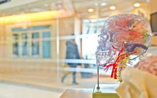 Что вам важно знать о«тихом» инсульте, клещах ианализах после ковида?Все оздоровье занеделю