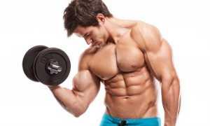 Как правильно качать грудные мышцы в тренажерном зале