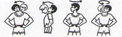Повороты и вращения шеей